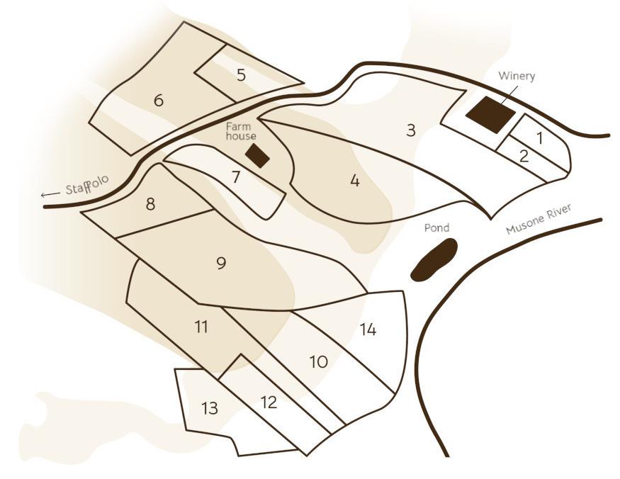 Mappa En